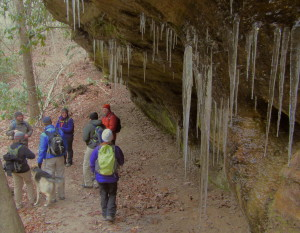 Eight hikers from across Kentucky and Ohio took advantage of a Sheltowee Trace Association organized First Day Hike in the Red River Gorge area. (Carrie Stambaugh)