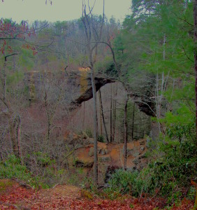 Gray's Arch measures more than 50 foot high and 80 feet across and is one of dozens of natural arches in the Daniel Boone National Forest. (Carrie Stambaugh)