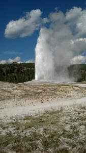 Old Faithful is one of the most dependably erupting geysers in Yellowstone National Park. (Photo by Carrie Stambaugh).