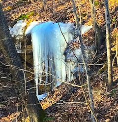 Ice sculptures, found where springs flow out of hillsides are a highlight of any local winter hike. (Carrie Stambaugh)