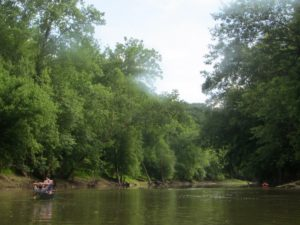 The Licking River is a perfect setting for a lazy summer afternoon paddle. (Carrie Stambaugh)
